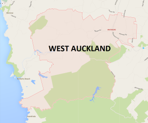 Renovating your nest out west Auckland?